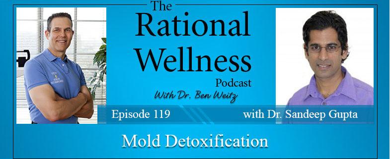 Mold Toxins and Chronic Illness with Dr  Sandeep Gupta